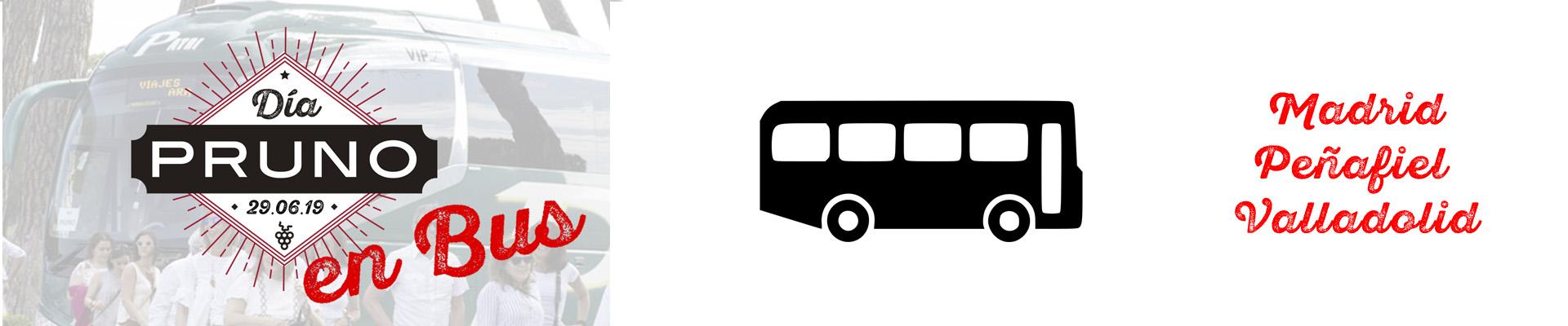 banner bus 2019